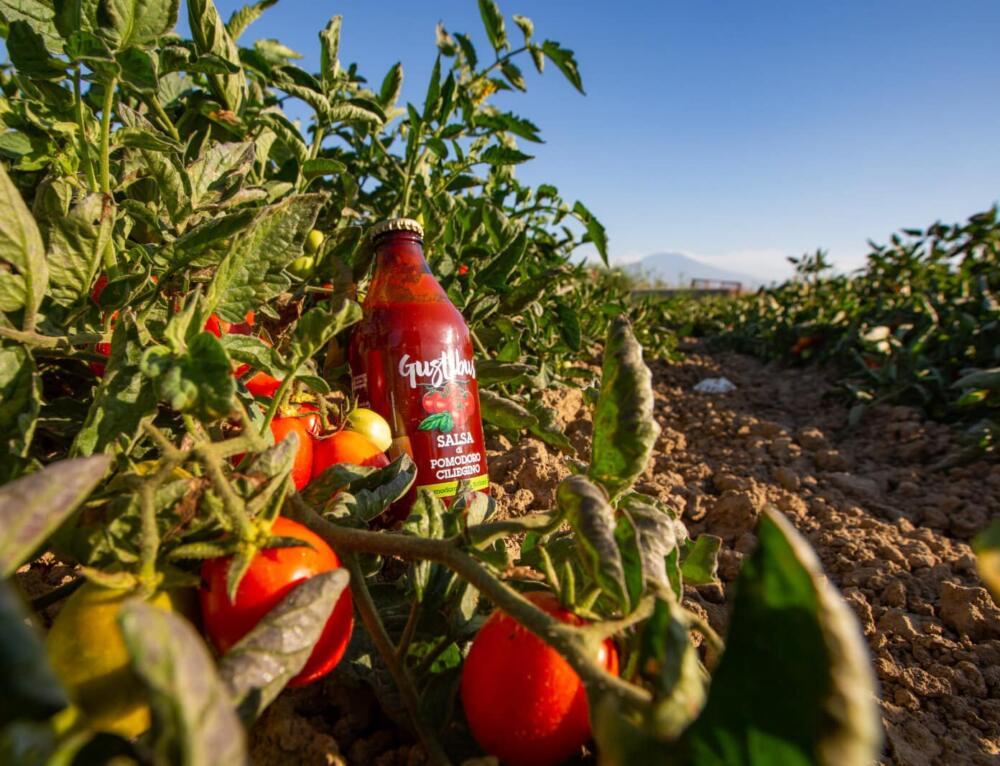 Agroindustria. Obiettivi 2021 Gustibus Alimentare:  innovazione, internazionalizzazione, territorio