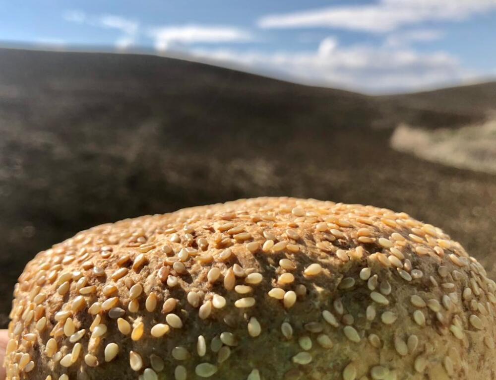 Agroalimentare, Pandittaino e la doppia filiera di grano tenero e duro